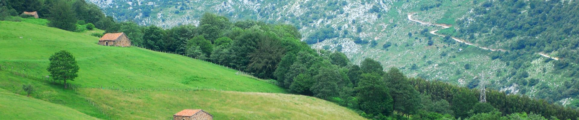 Valle del Nansa org Cantabria Spain